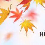 Mossa tipsar – så njuter du av hösten